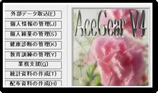 商品紹介:ACE GEAR V4
