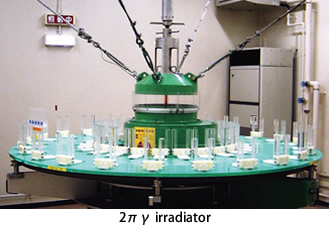 2πγ irradiator