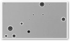 Neutron Detector